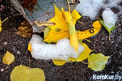 Мокрый снег и туман: погода на неделе будет ненастной