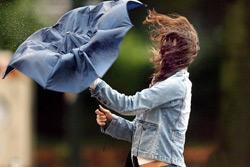 На понедельник объявлено штормовое предупреждение: сильный ветер