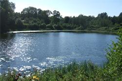 Что нашли в озере у СОК «Шинник»?