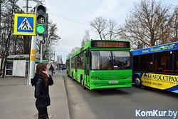 «Коммерческий» на связи: остановись, автобус!